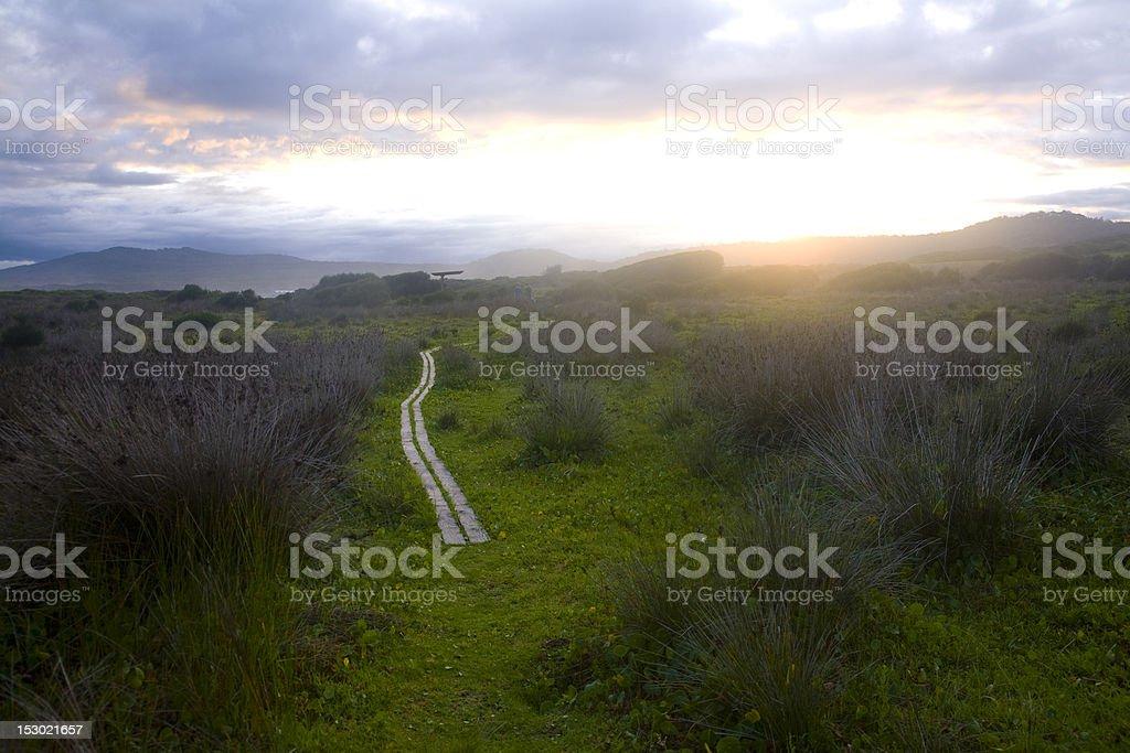Boardwalk path along Australian coastline royalty-free stock photo