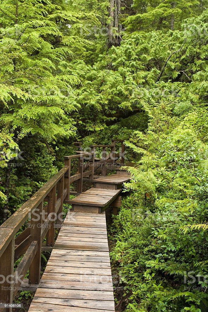 boardwalk path royalty-free stock photo