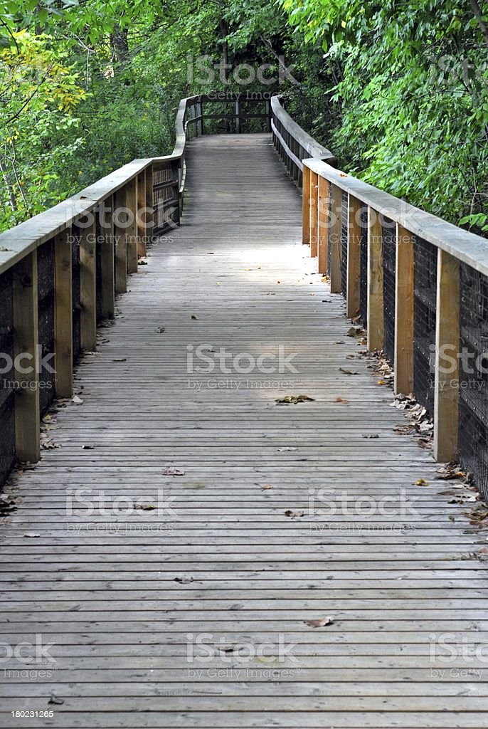 Boardwalk through forest royalty-free stock photo