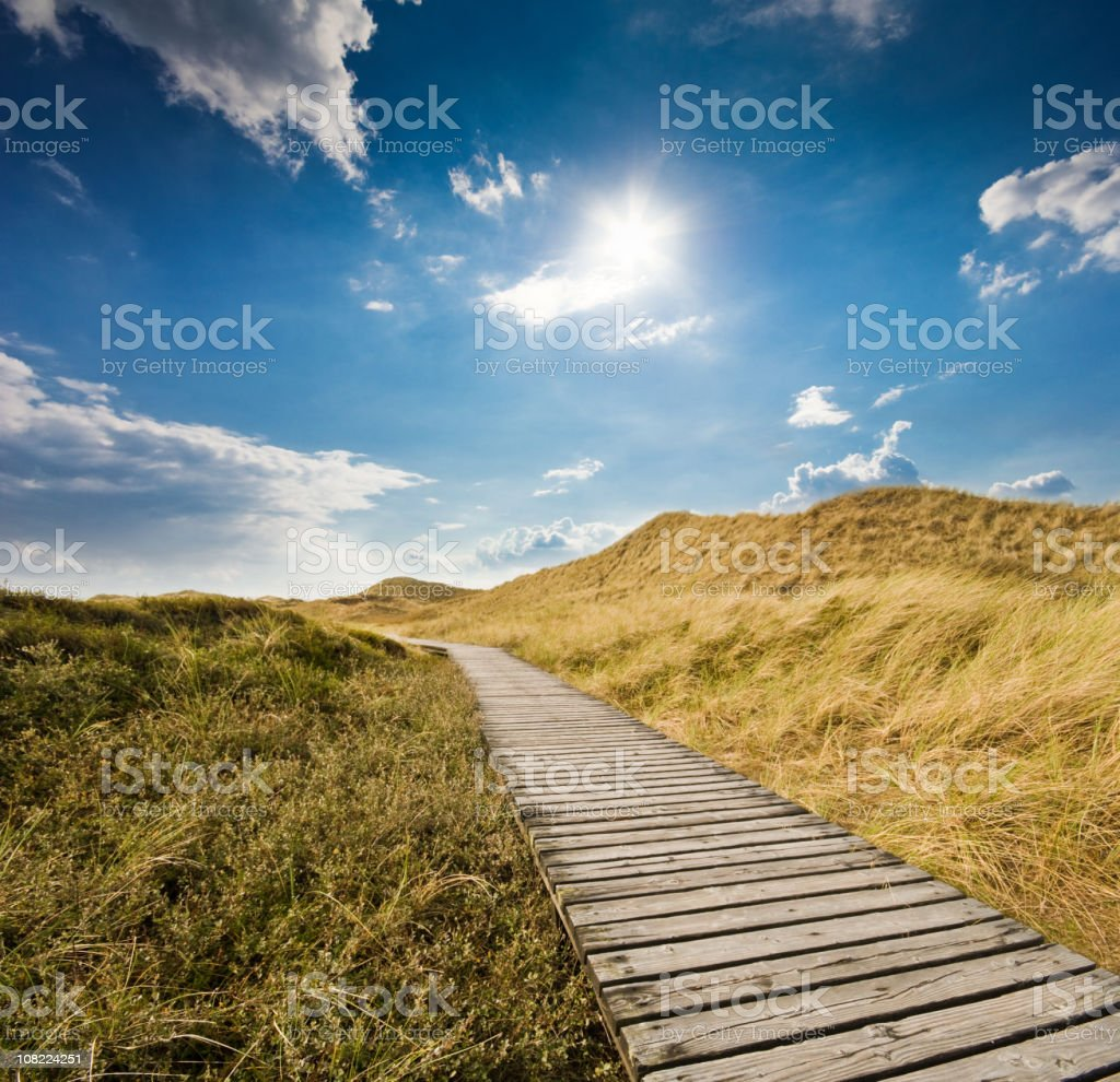 Boardwalk Through Sand Dunes Against Blue Sky royalty-free stock photo