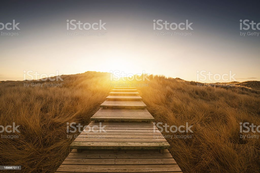 Boardwalk through the dunes stock photo
