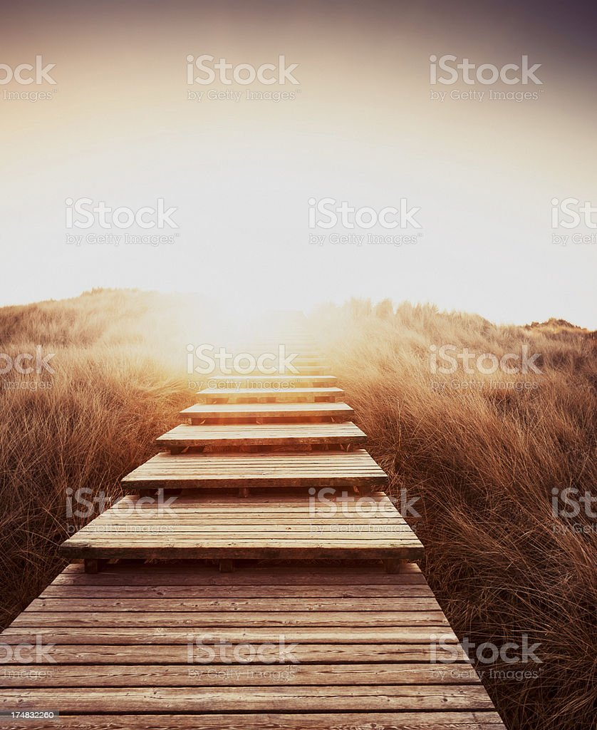 Boardwalk through the dunes royalty-free stock photo