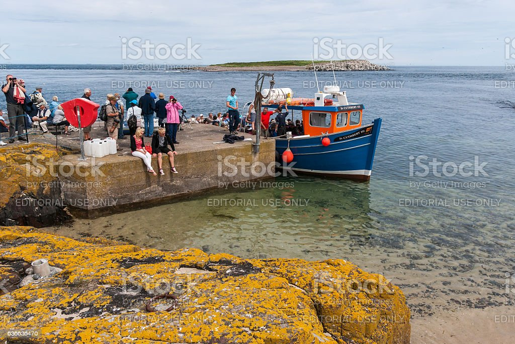 Boat at Inner Farne stock photo