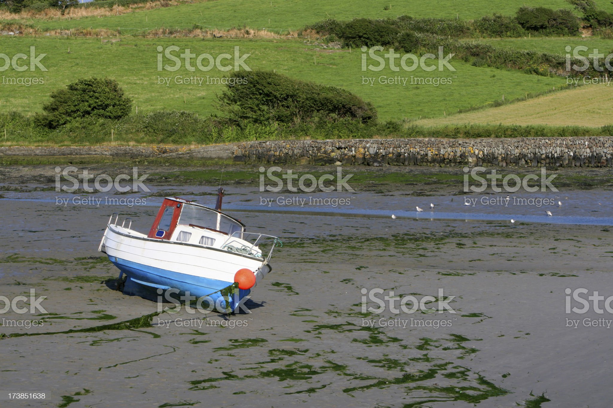 Boat at Low Tide, County Cork, Ireland royalty-free stock photo