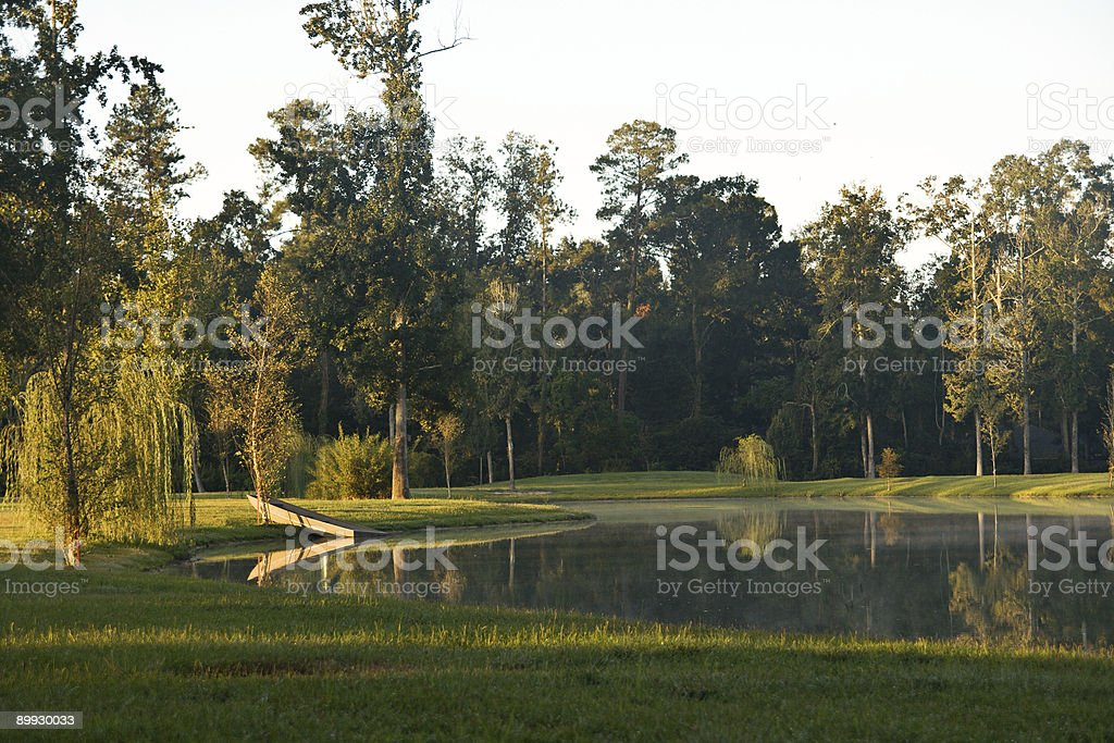 Boat by the Pond royalty-free stock photo