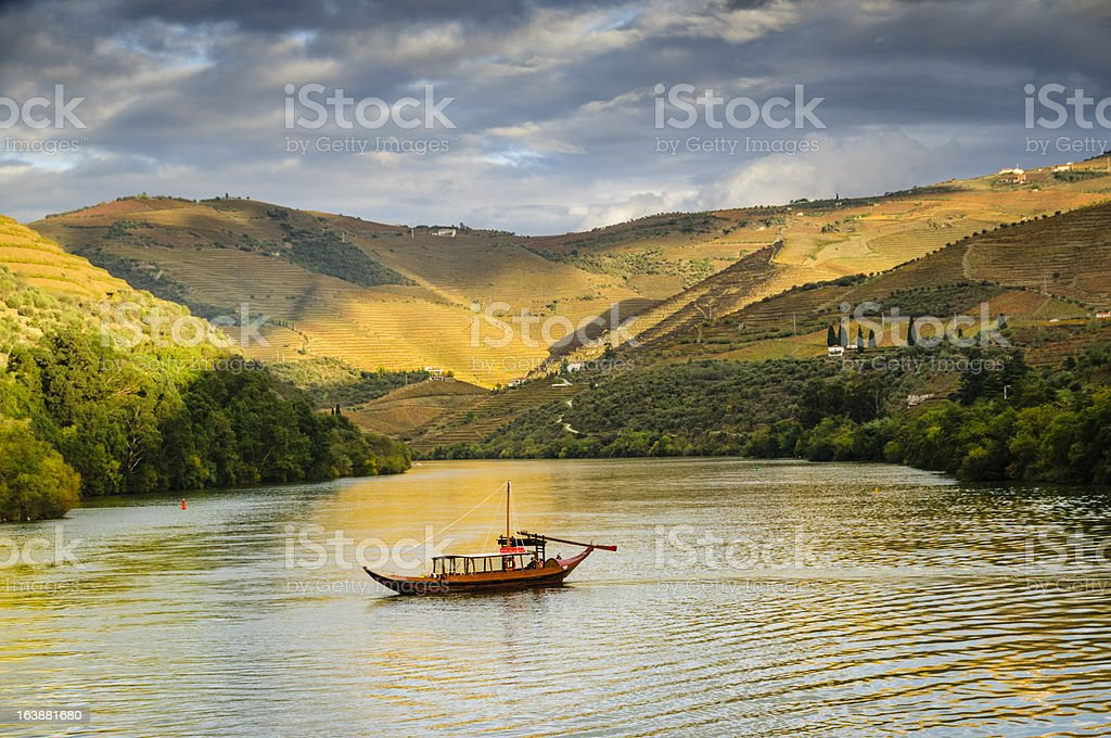Boat cruising down river at sunset next to terraced vineyards stock photo