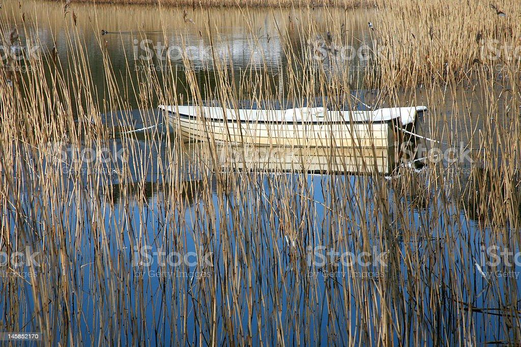 Boat floating among straws royalty-free stock photo
