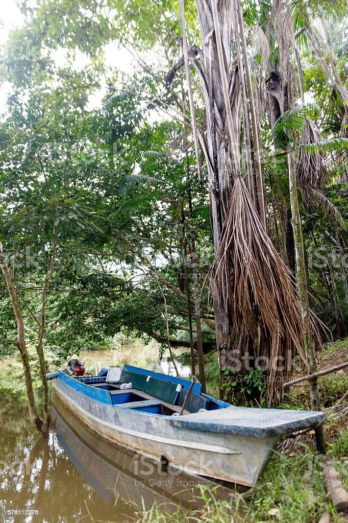Boat In The Amazon stock photo