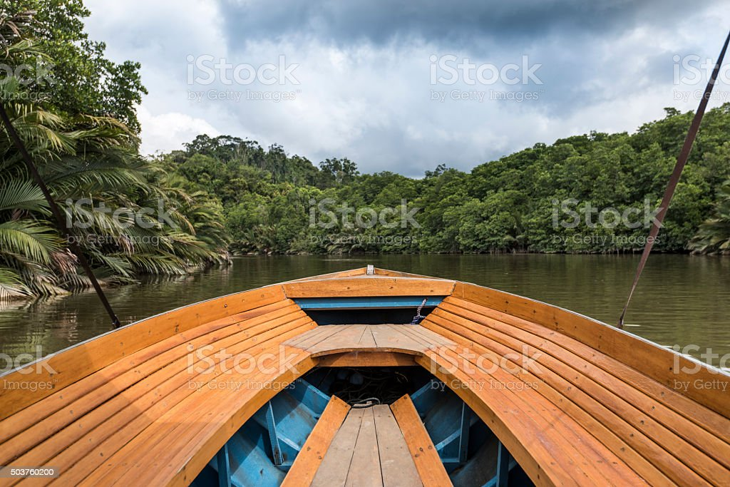 Boat in The Jungle stock photo