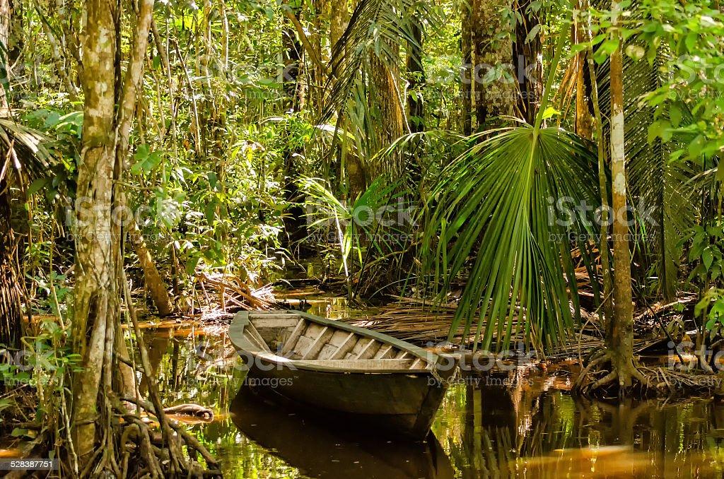 Boat in the jungle stock photo