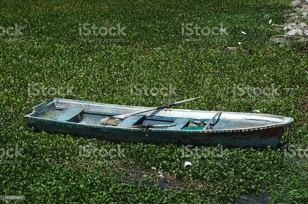 Boat in water plants royalty-free stock photo
