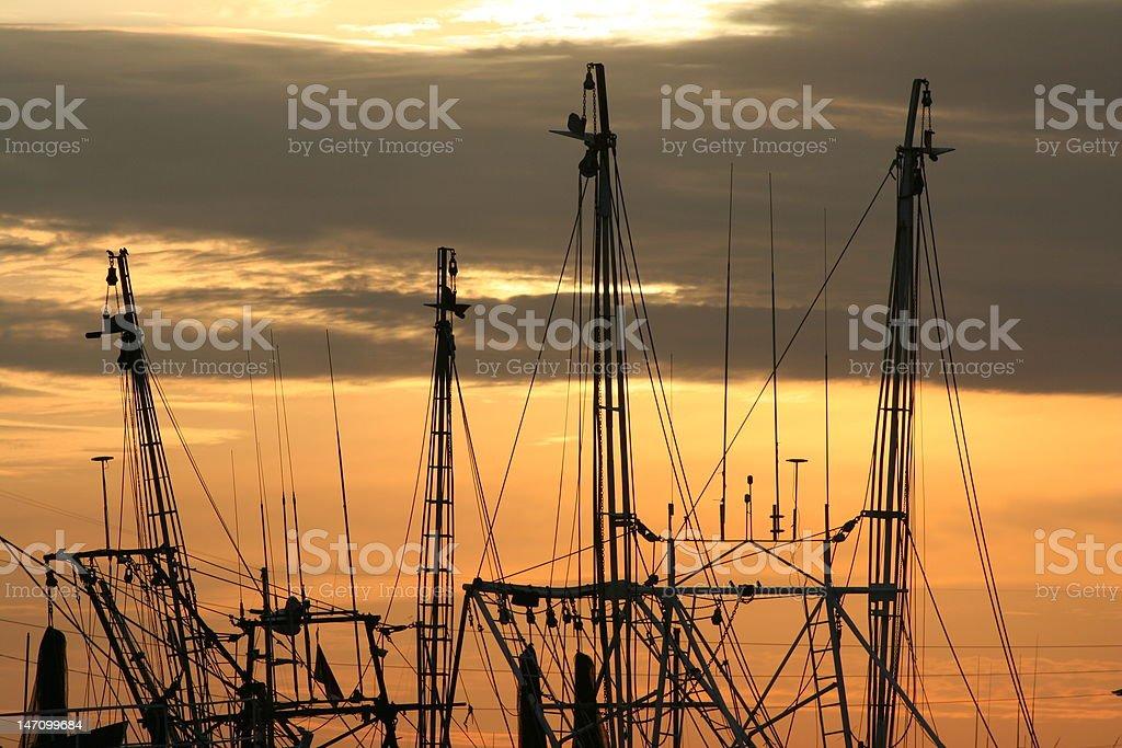 Boat masts at dawn royalty-free stock photo