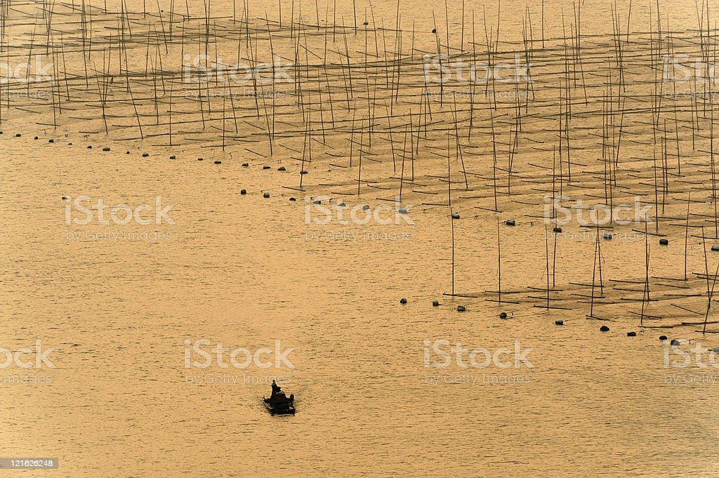 Boat near the seaweed farm royalty-free stock photo