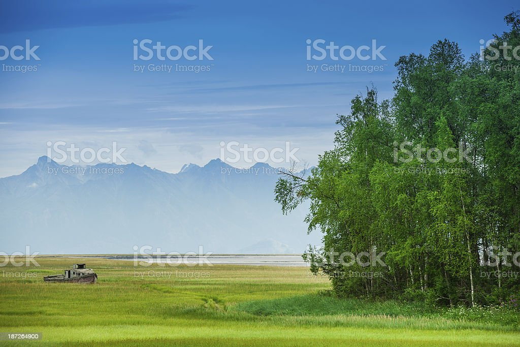 Boat on Grass stock photo
