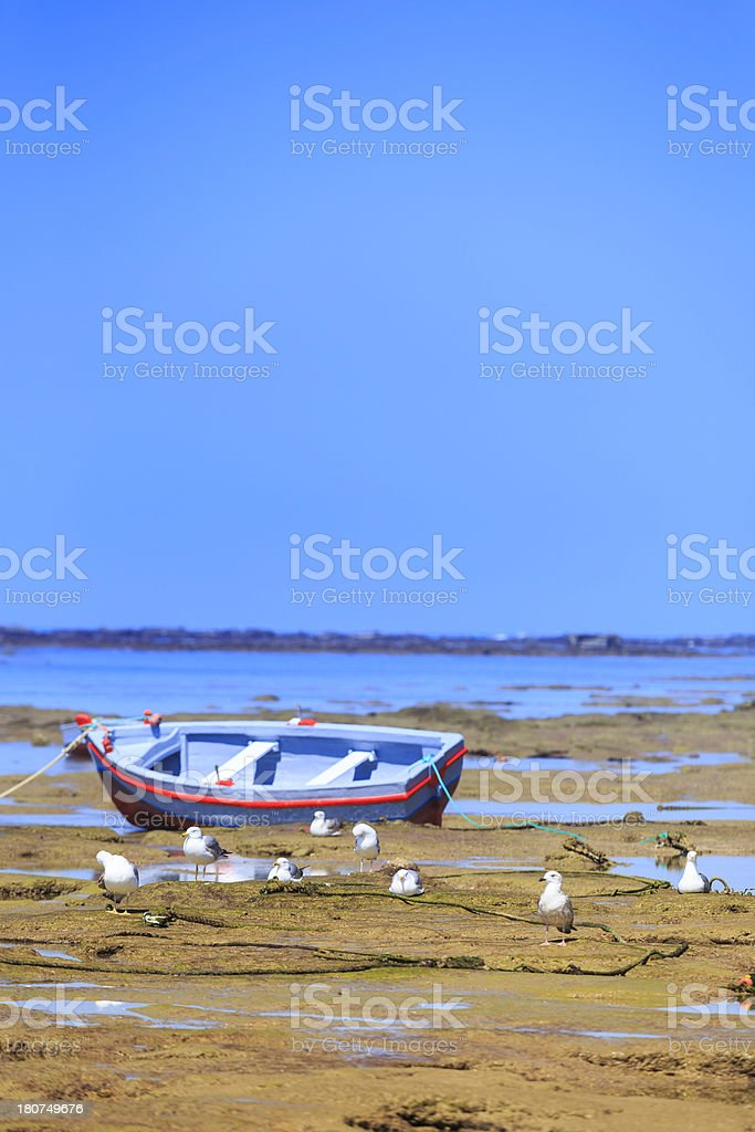 boat on the beach royalty-free stock photo