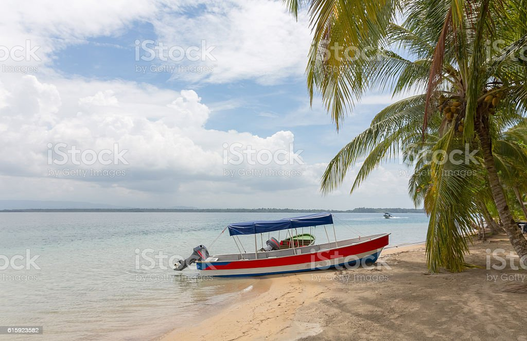 Boat on the beach under palm tree stock photo
