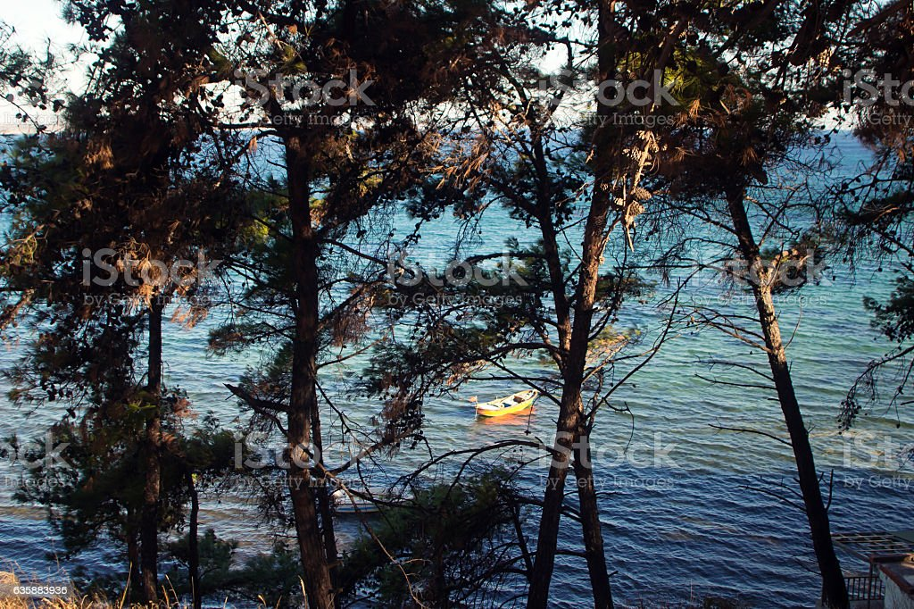 Boat on the sea between the trees stock photo