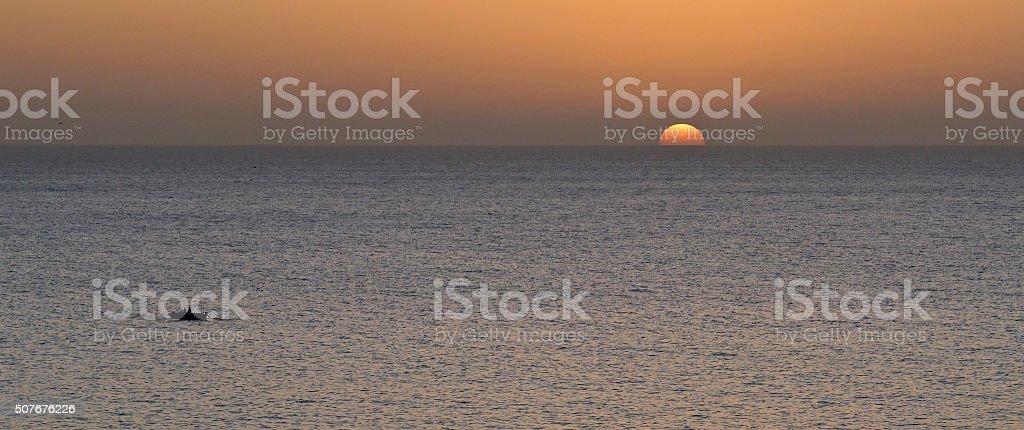 boat returning in the sundown stock photo