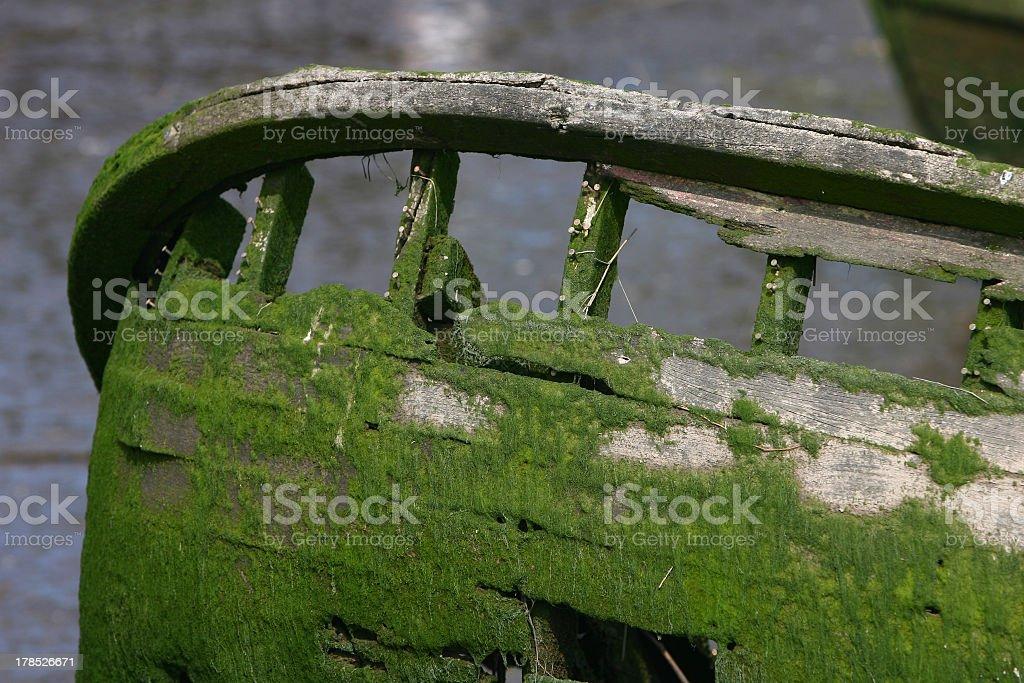 Boat skeleton covered in algae royalty-free stock photo