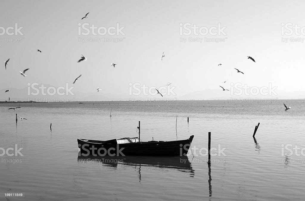 Boat with birds. royalty-free stock photo