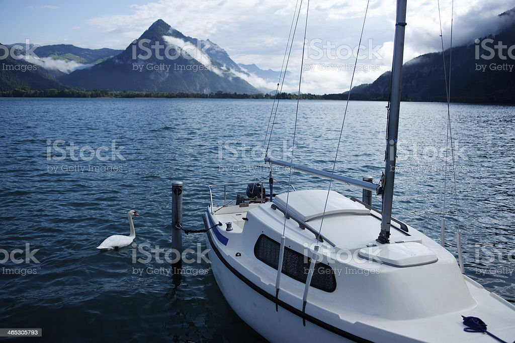 Boat with Swan in Interlaken Lake, Switzerland royalty-free stock photo