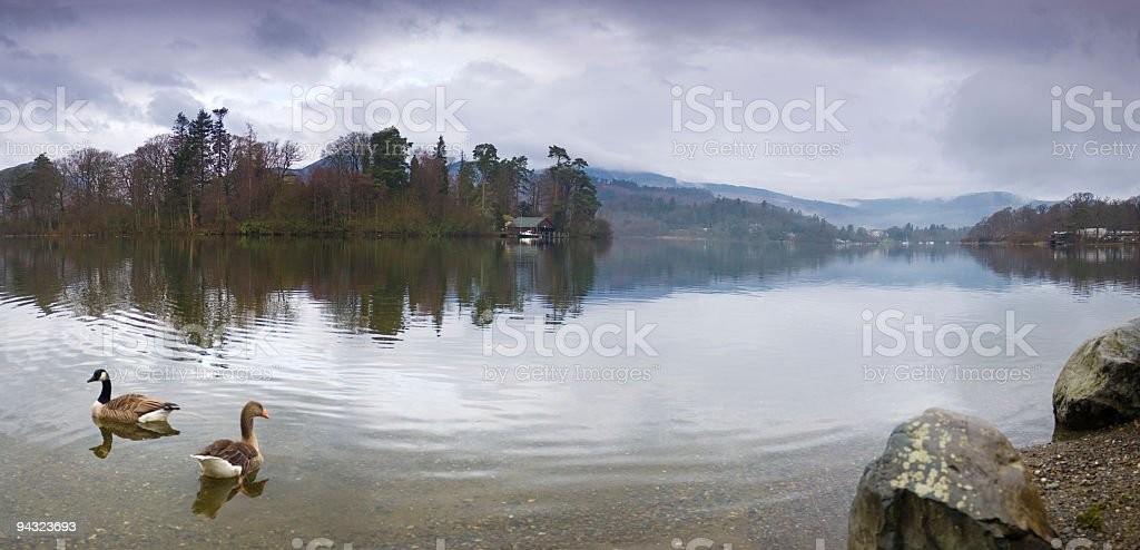 Boathouse, lake, geese royalty-free stock photo