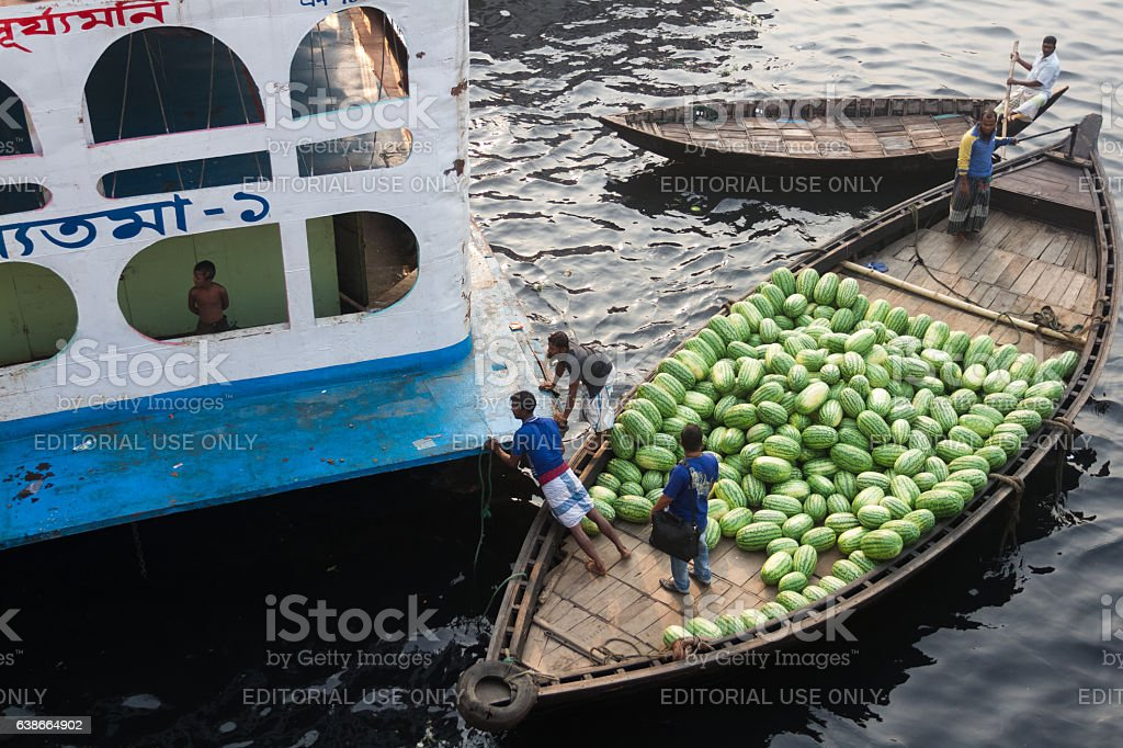 Boatman pushing his boat to clear way in the River stock photo