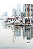 boats and yachts in a misty day in harbour marina