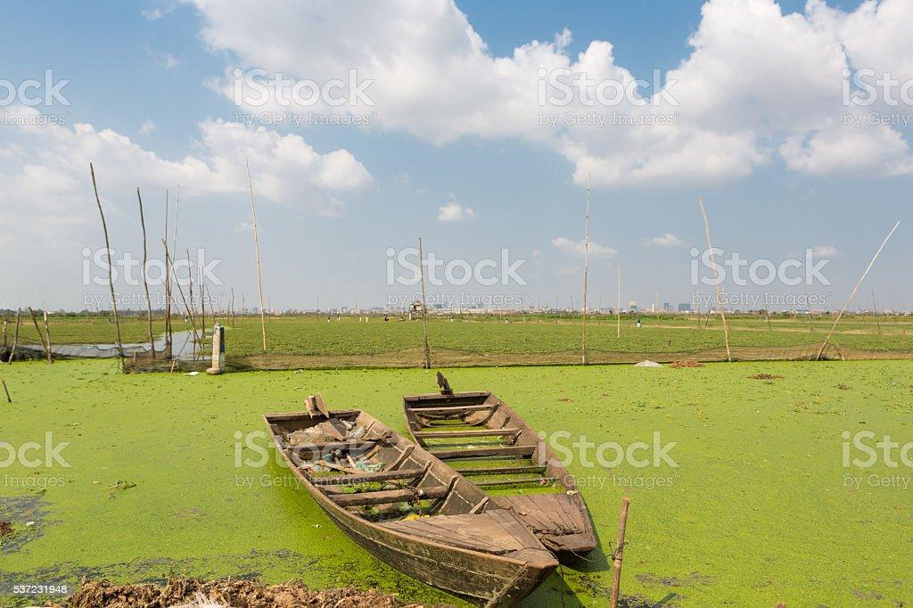 Boats floating near rice fields near Phnom Penh stock photo