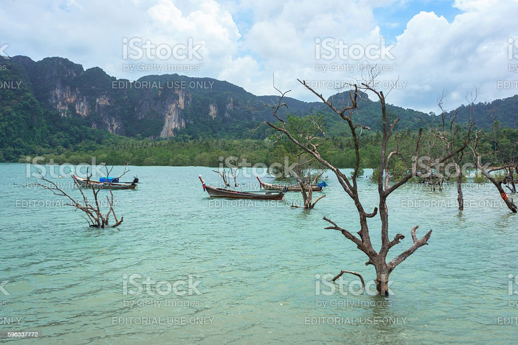 Boats, forest and mountain in Krabi, Thailand photo libre de droits