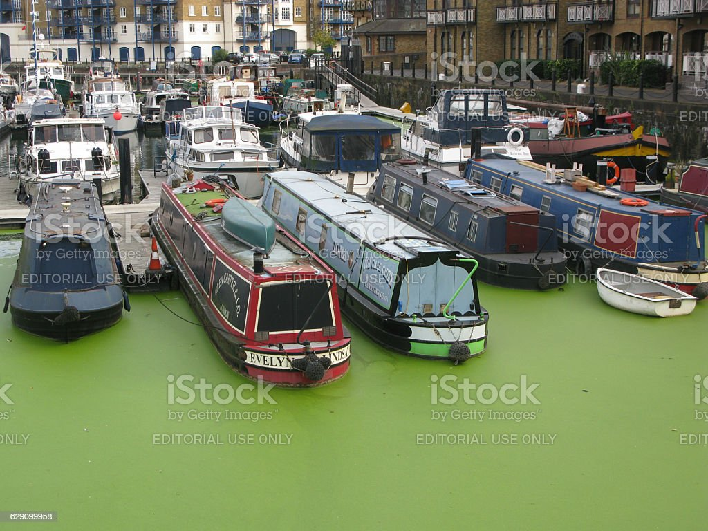 Boats in Limehouse Basin, London, UK stock photo