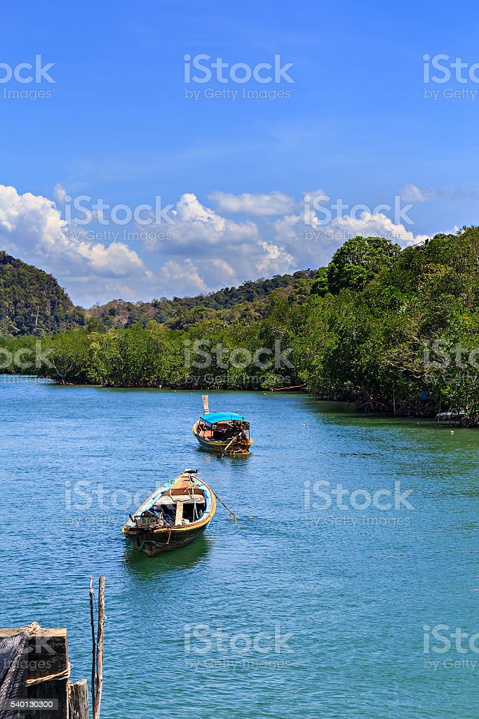 Boats in tropical mangrove forest and nice sky stock photo