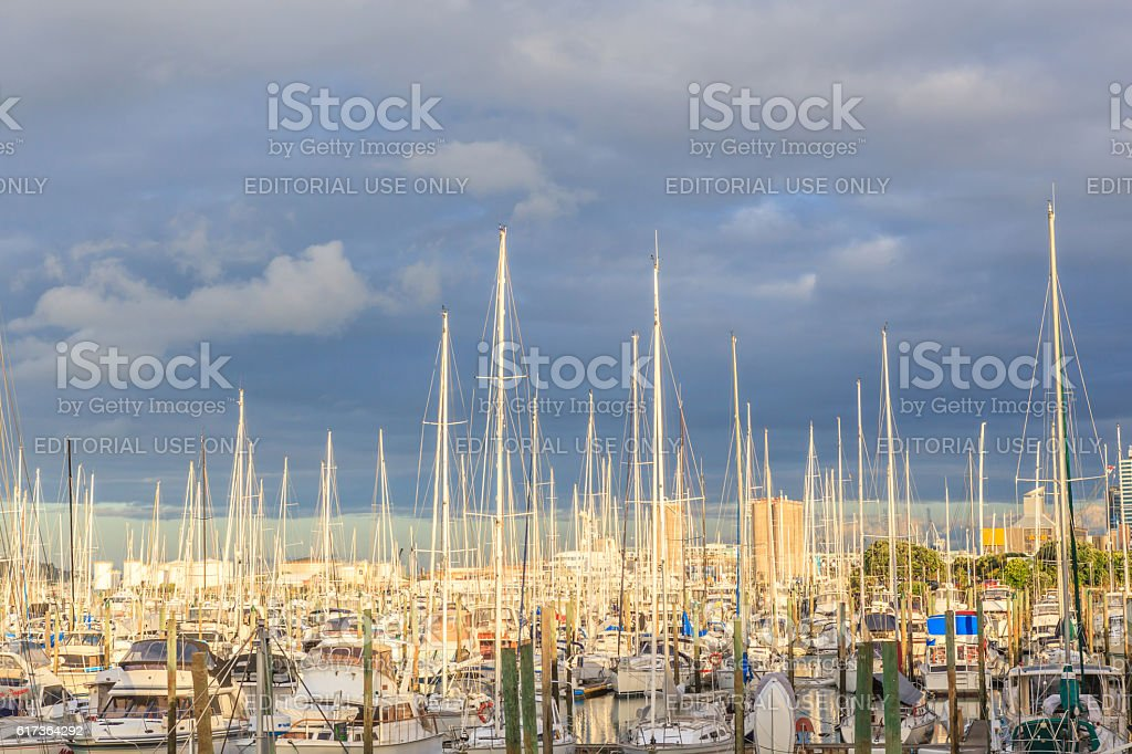 Auckland, New Zealand- December 9, 2013. Boats mooring. stock photo