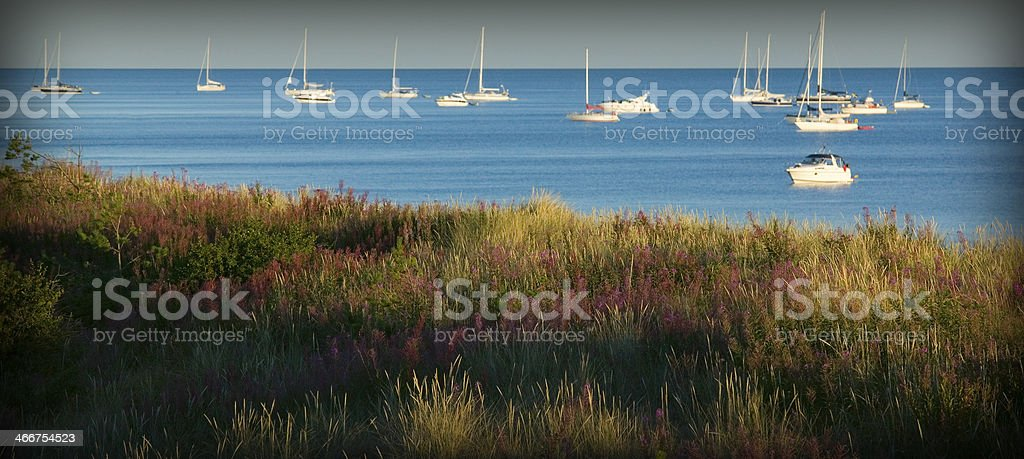 Boats outside an grass and flower coverd beach stock photo