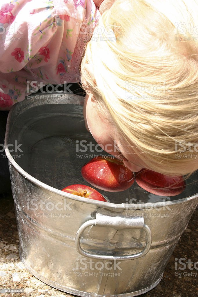 bobbing for apples royalty-free stock photo