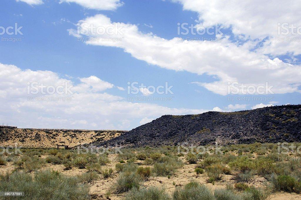 Boca Negra Canyon Petroglyphs stock photo