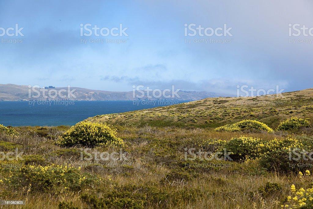 Bodega Bay Hills royalty-free stock photo