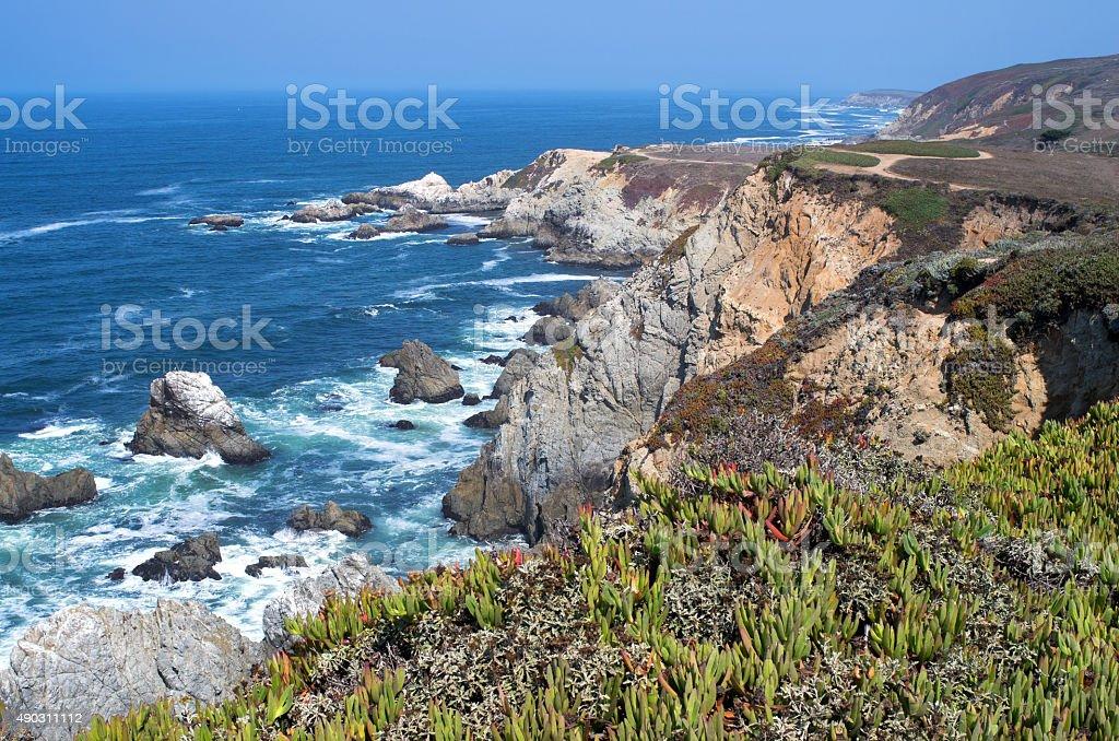 Bodega Head Rugged Coast and Trail stock photo