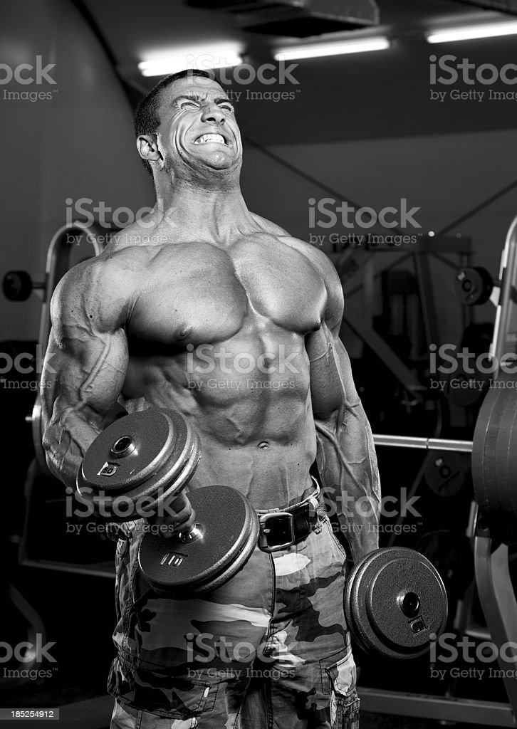 Body Builder Exercising With Weights in The Gym royalty-free stock photo