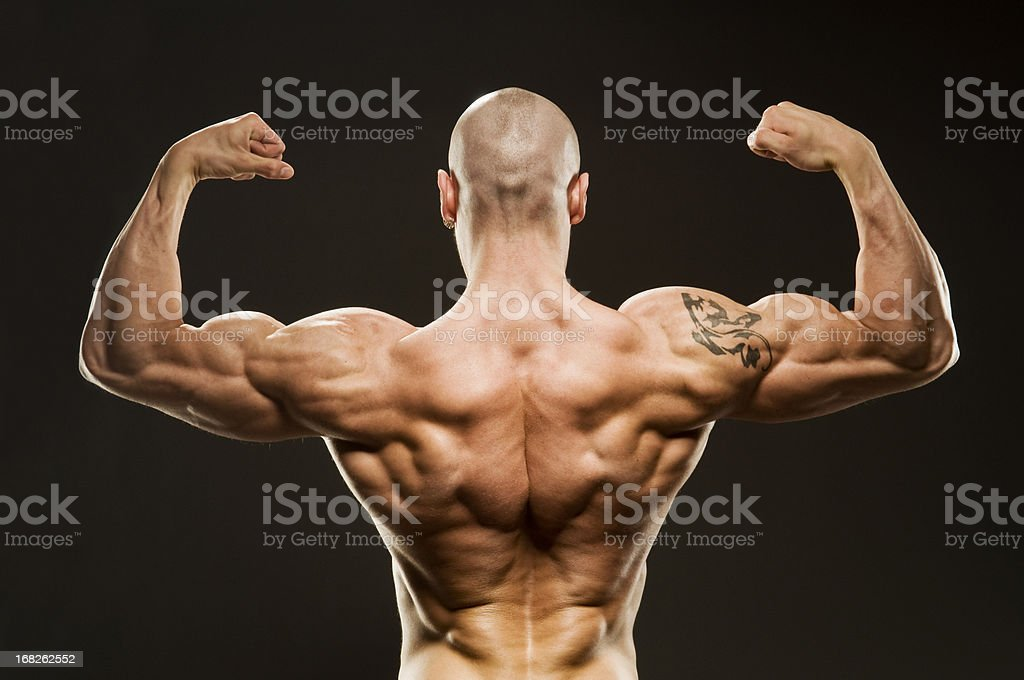 Body Builder Posing - Back Double Biceps royalty-free stock photo