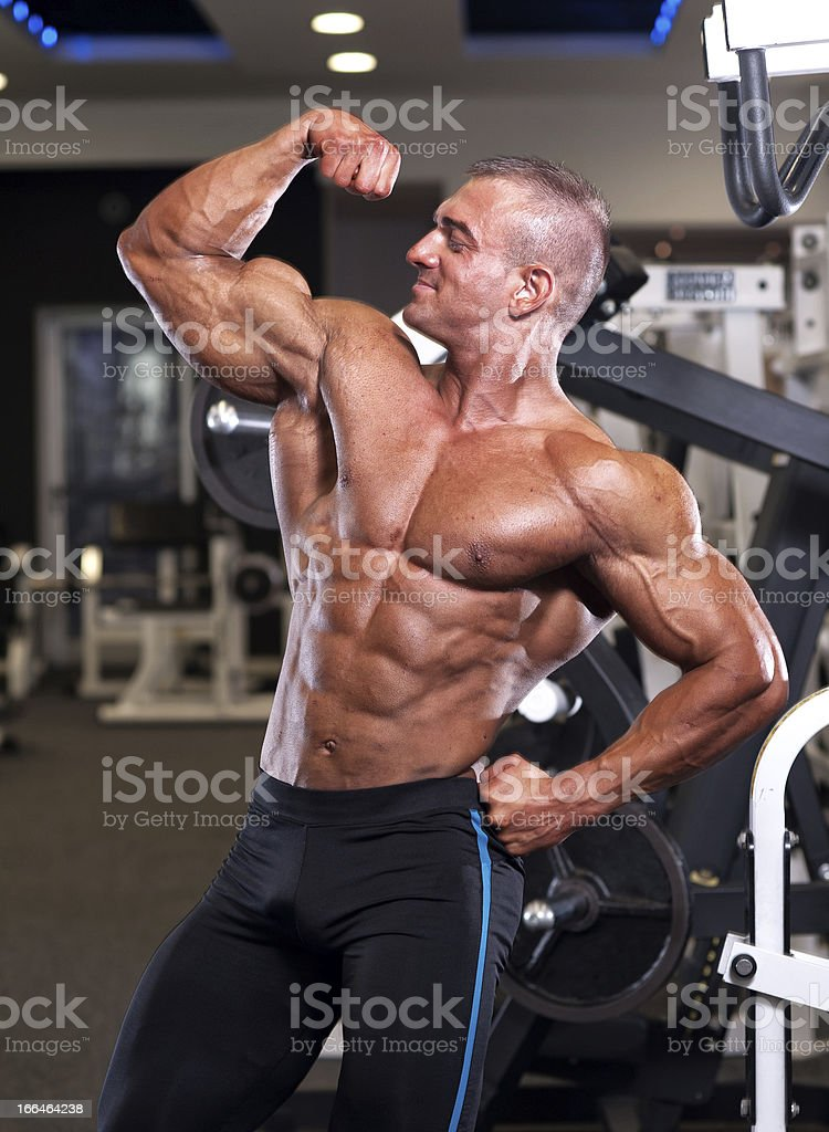 Body Builder Posing royalty-free stock photo