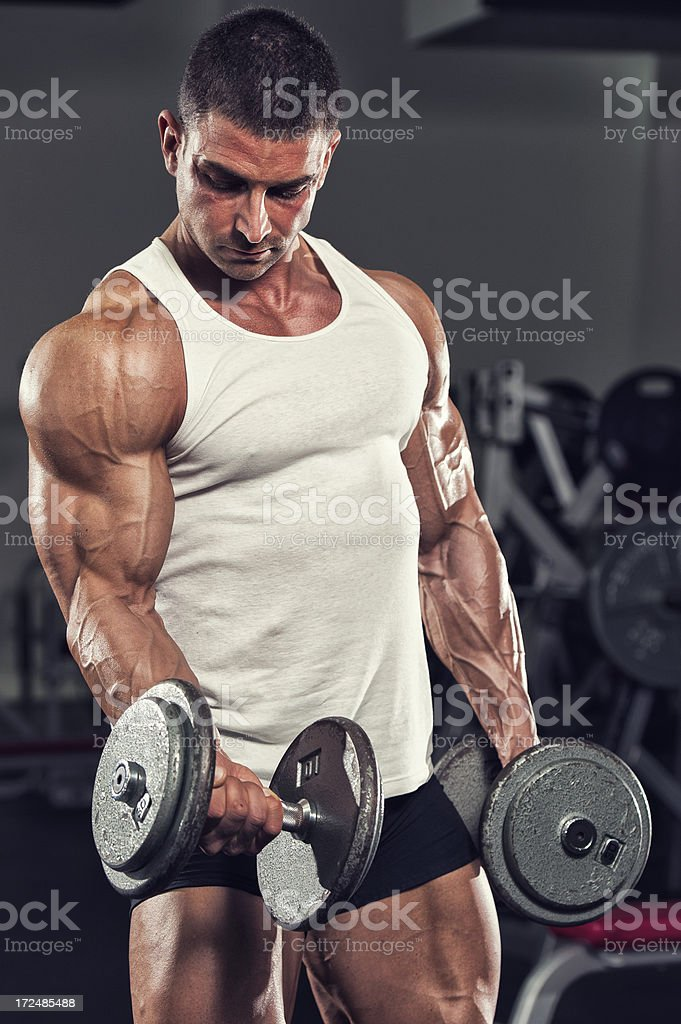 Body Building In Progress royalty-free stock photo