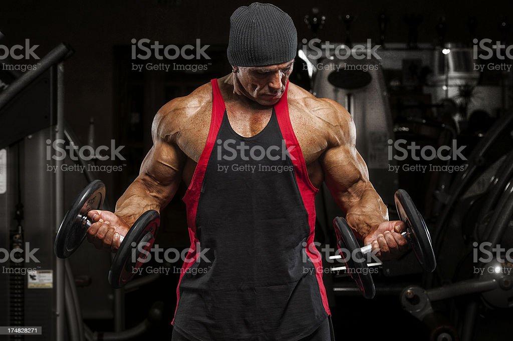 Body Building royalty-free stock photo