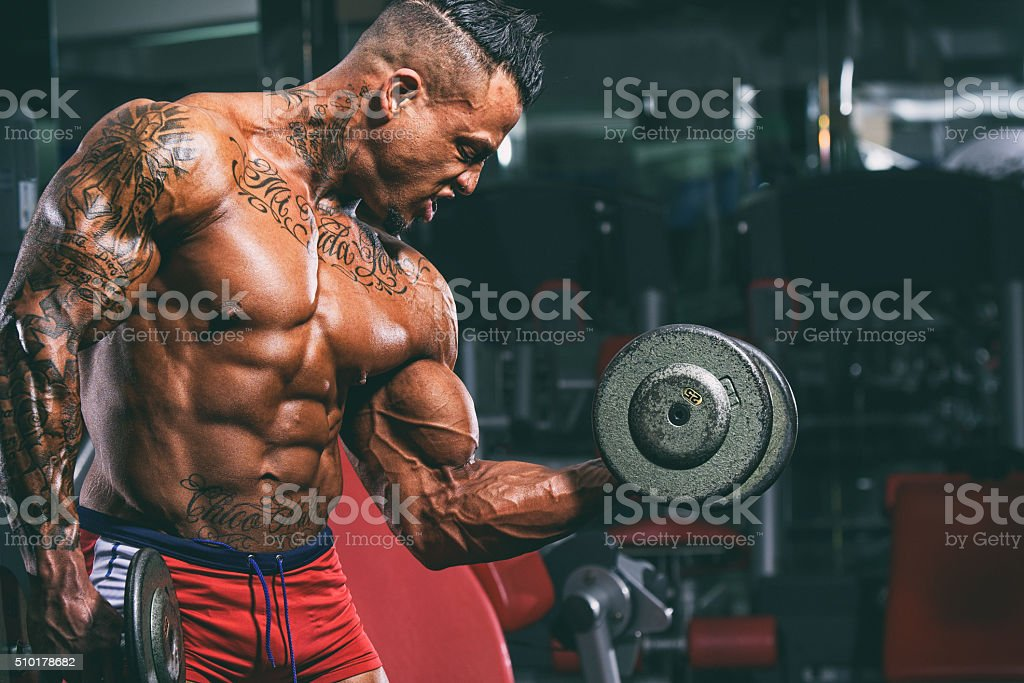 Body Building stock photo