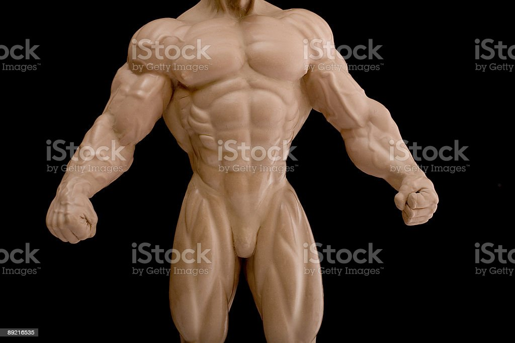 Body of bodybuilder royalty-free stock photo