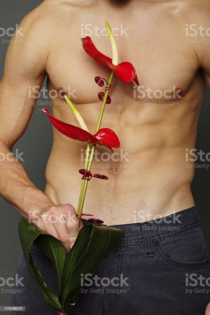 Body of man with flower stock photo