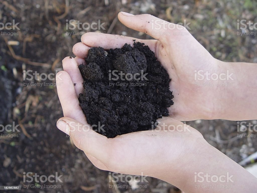 body parts - hands holding soil royalty-free stock photo