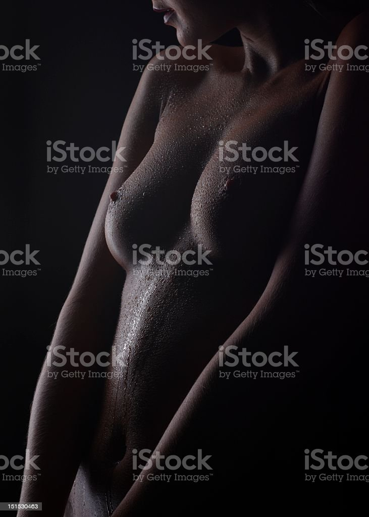 body royalty-free stock photo