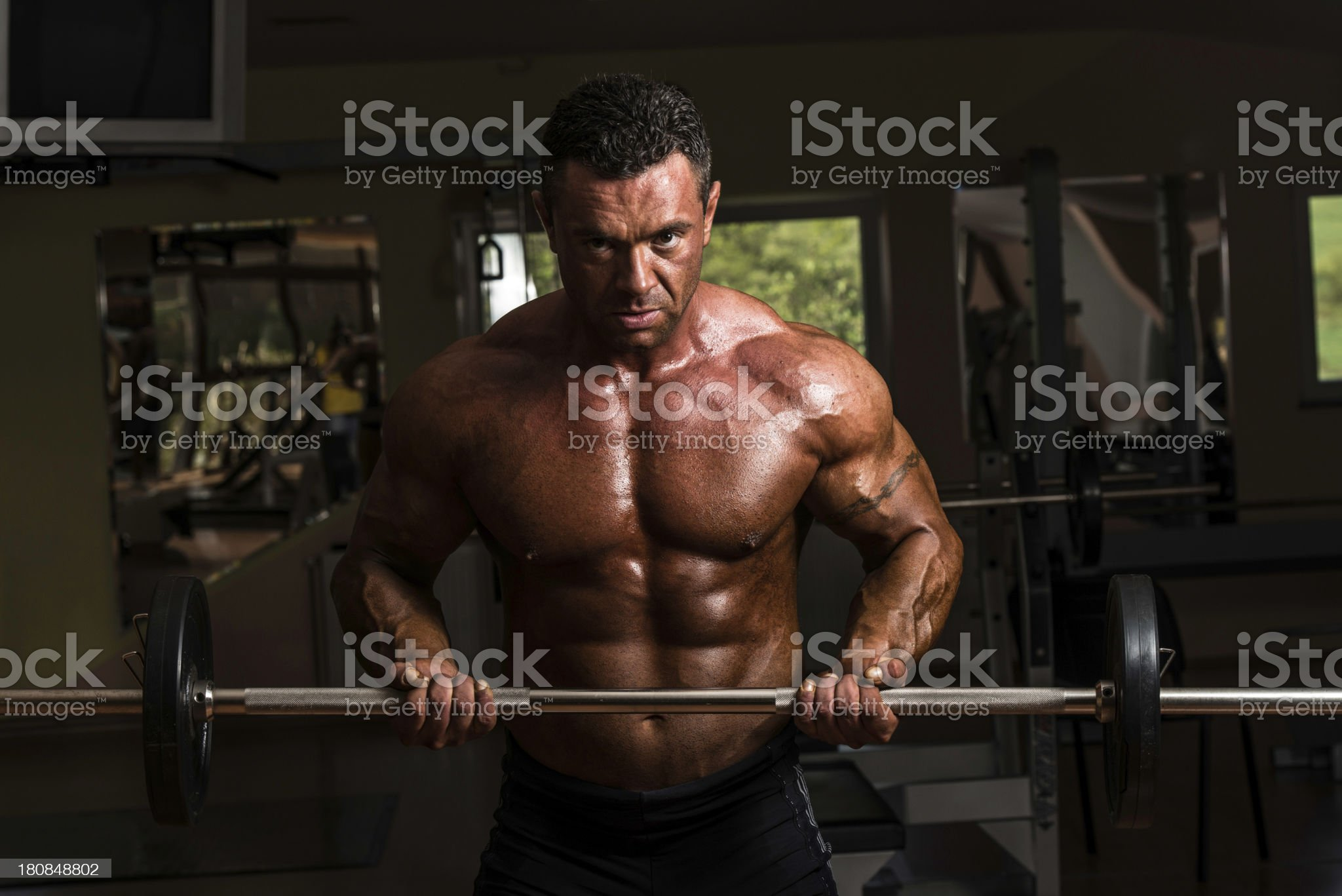 bodybuilder doing heavy weight exercise for biceps with barbell royalty-free stock photo