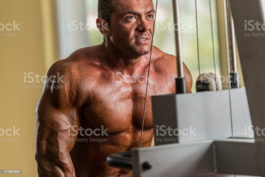 bodybuilder doing heavy weight exercise for triceps with cable royalty-free stock photo